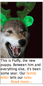Fluffy_ad_sample1.png