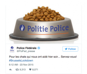 Belgian-Police-Cat-Tweet