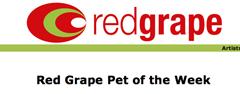 redgrape.png