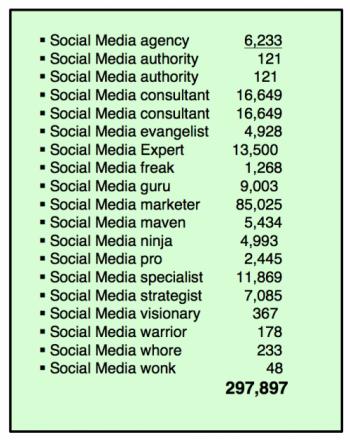 socialMediaGURUS-2014