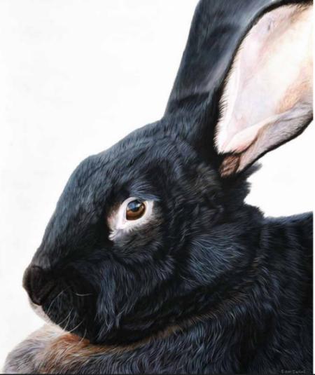 Ester Curini bunny