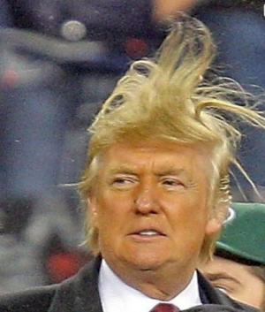 Donald Trump Hair